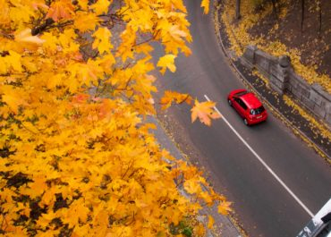 Fall Is Time for Car Care | Millsboro Auto Care